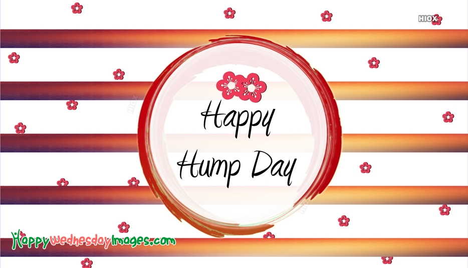 Happy Hump Day Images