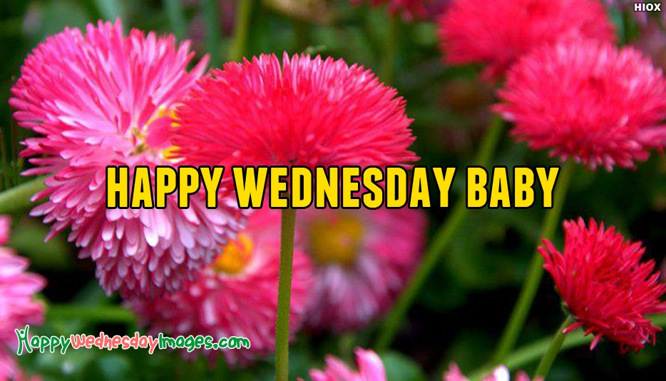 Happy Wednesday Baby - Happy Wednesday Images for Girlfriend