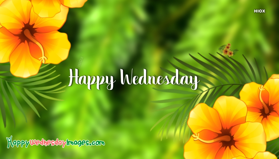 Happy Wednesday Green Images, Pictures