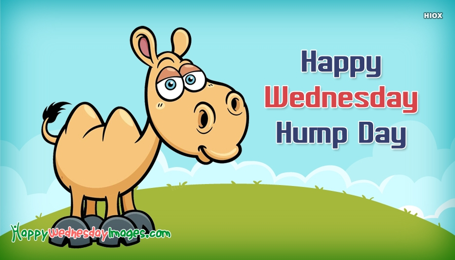 Happy Wednesday Hump Day Images
