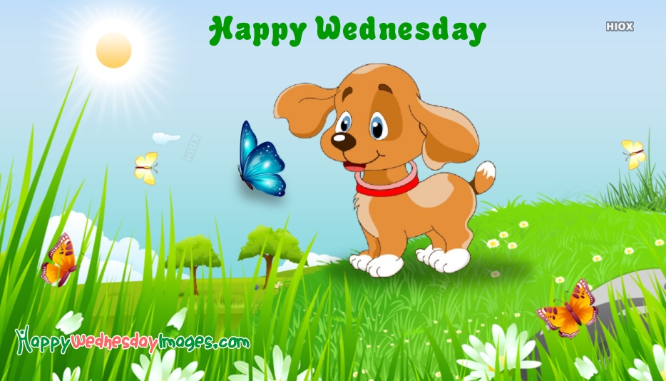 Happy Wednesday Cartoon Images