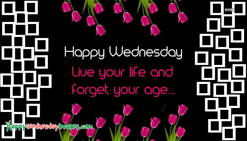 Happy Wednesday Life Quotes