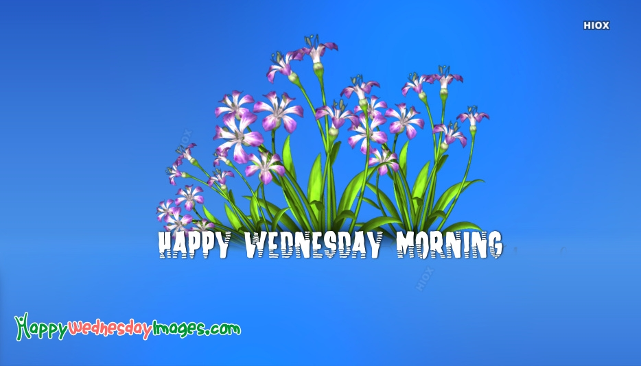 Happy Wednesday Images for Good Morning