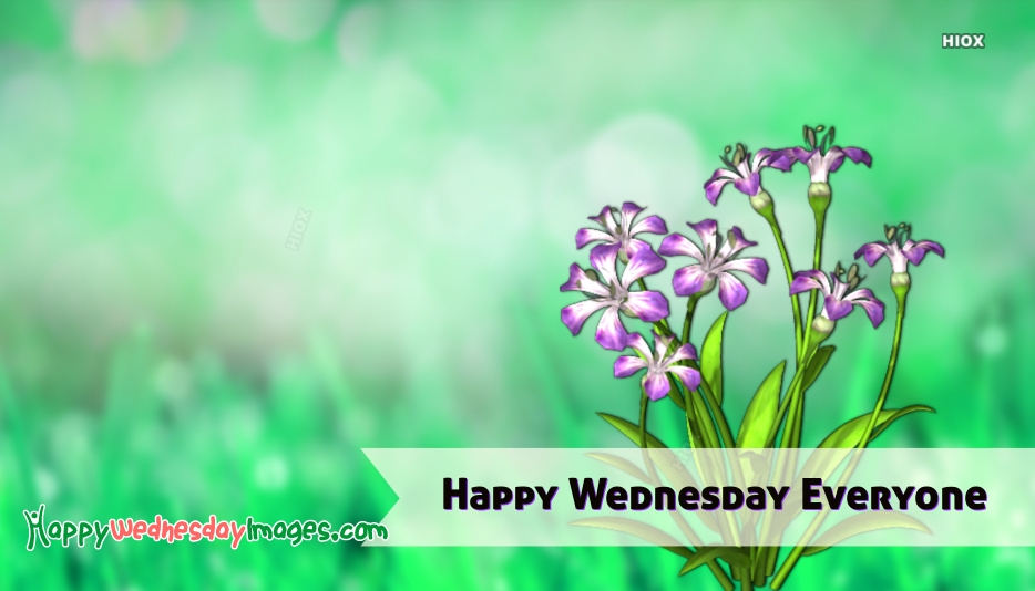 Happy Wednesday Nature Images