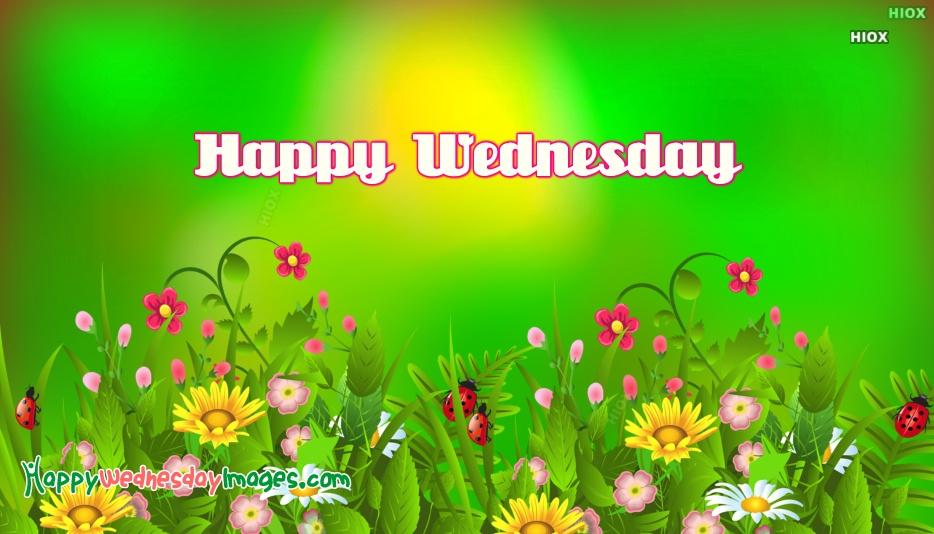Happy Wednesday Spring