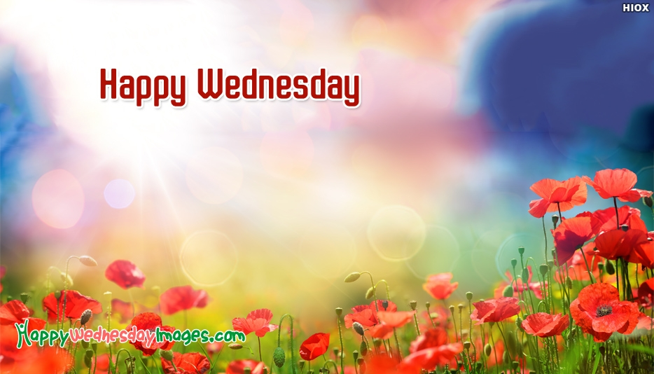Happy Wednesday Wallpaper - Happy Wednesday Images for Wallpaper