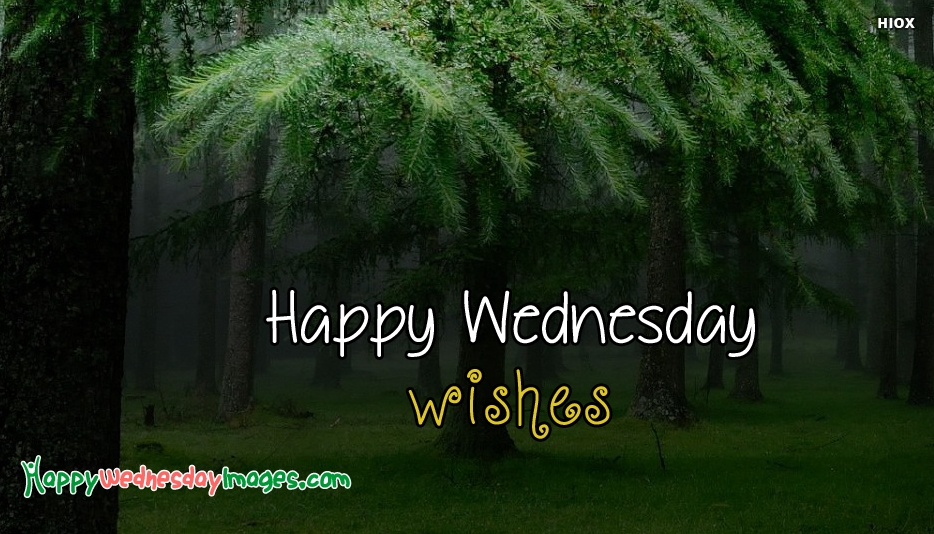 Happy Wednesday Images for Free Download