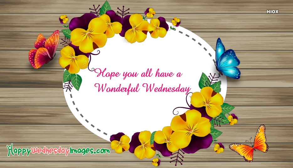 Hope You All Have A Wonderful Wednesday