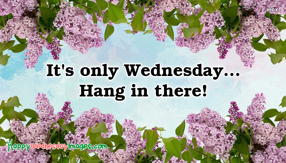 Its Only Wednesday. Hang In There