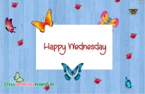Happy Wednesday Pics