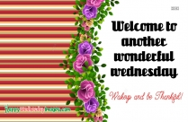 Happy Wednesday Text Messages, Quotes