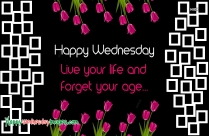 Happy Wednesday Life Quotes