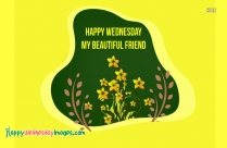 Happy Wednesday My Friend