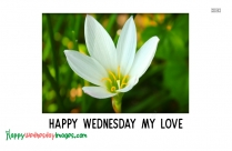 Happy Wednesday My Love Images