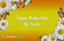 Wish You Happy Wednesday