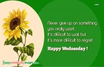 Happy Wednesday Motivation Quotes