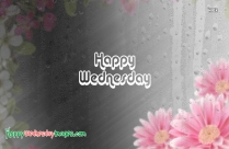 Happy Wednesday Rainy Day