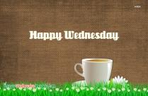 Happy Wednesday Tea