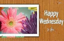 Happy Wednesday To You