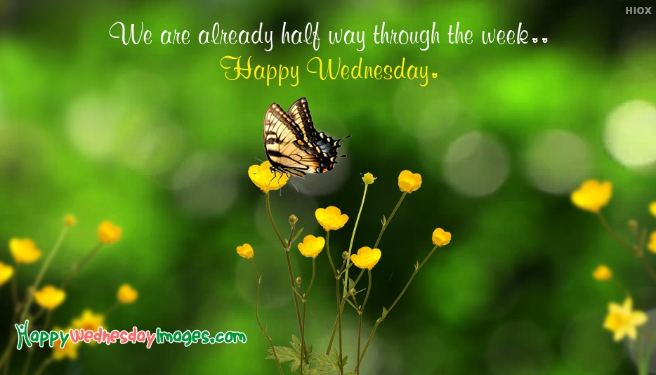 Happy Wonderful Wednesday Images