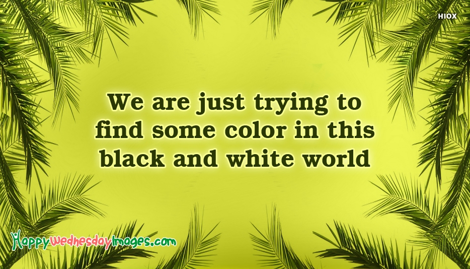 We Are Just Trying To Find Some Color In This Black And White World