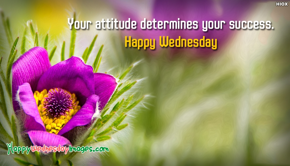 Your Attitude Determines Your Success. Happy Wednesday - Motivational Wednesday Quotes and Images